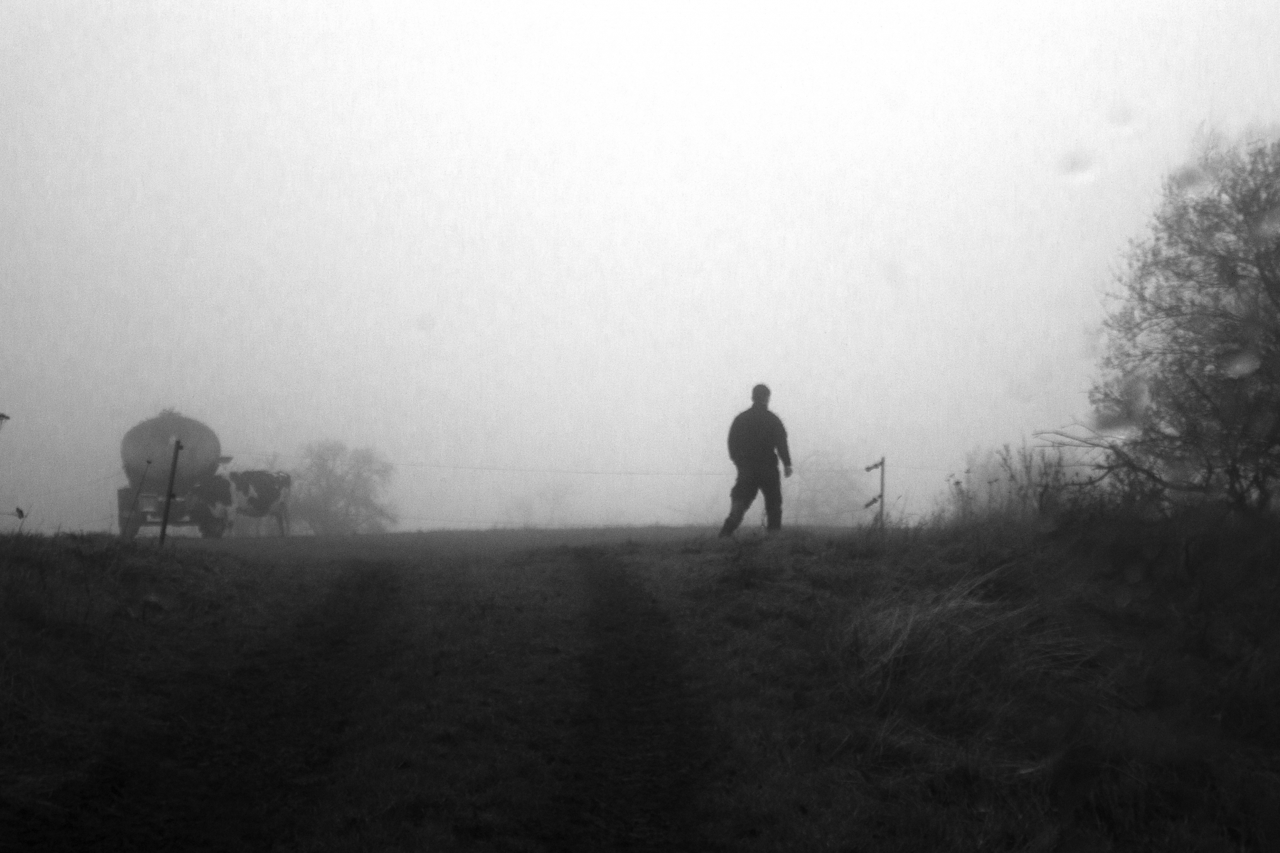 A man standing on a field in the fog